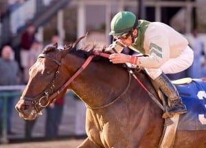 Abstraction takes the Tesio.  Next stop, the Preakness?  Photo by Jim McCue, Maryland Jockey Club.