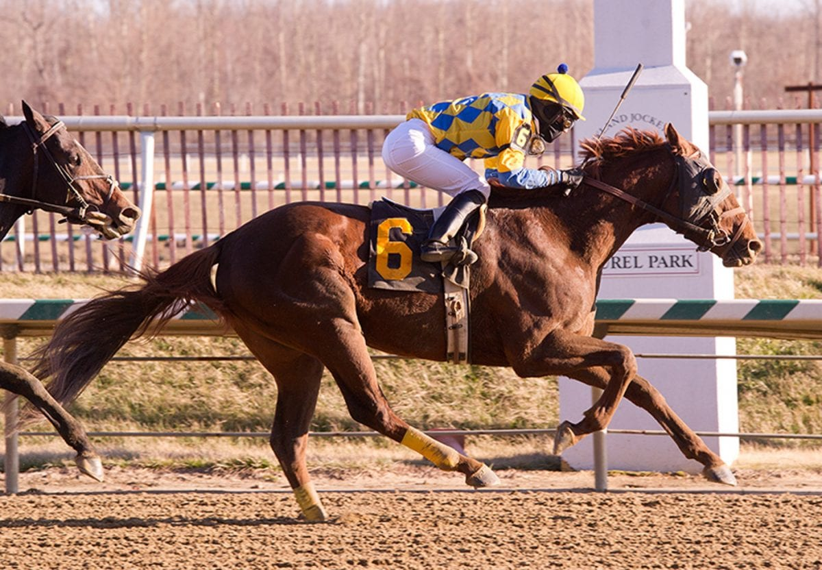 Racing returns to Laurel Park, and it feels like just in time