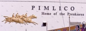 Pimlico sclaed 2012