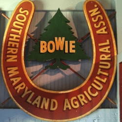 bowie smaa logo