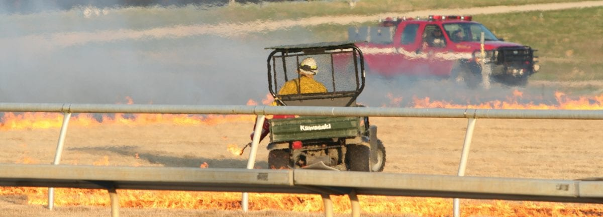 Hot Stuff!  Colonial Downs sets turf course aflame — for safety