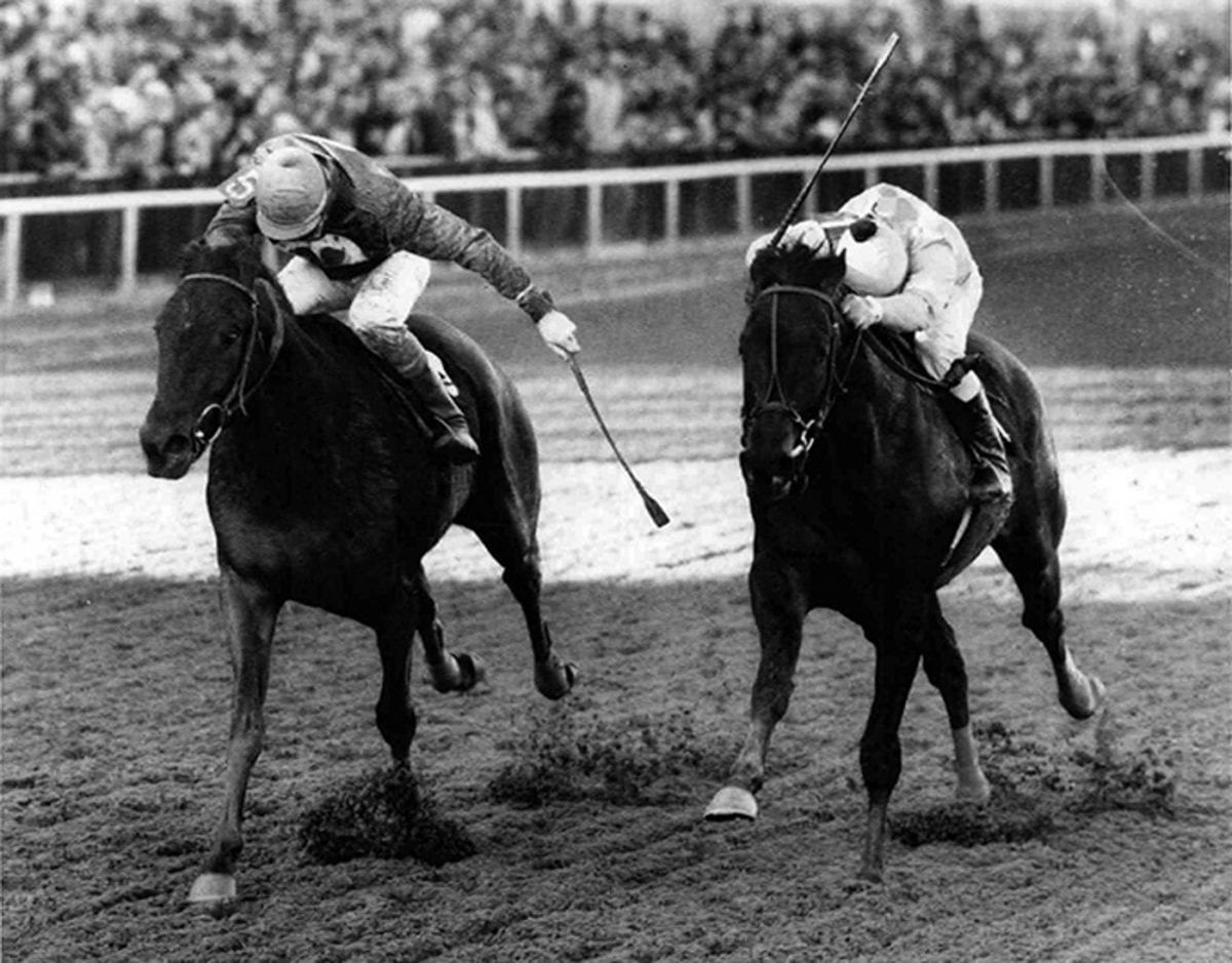 Maryland Thoroughbred Hall of Fame Inductees: Broad Brush and Challedon