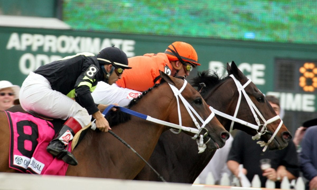 Featured race: Handicapping Parx 6, or She's a Beauty!