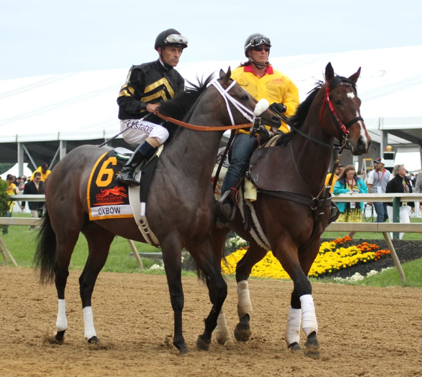 Black-Eyed Susan Jockey Challenge to feature Hall of Famers