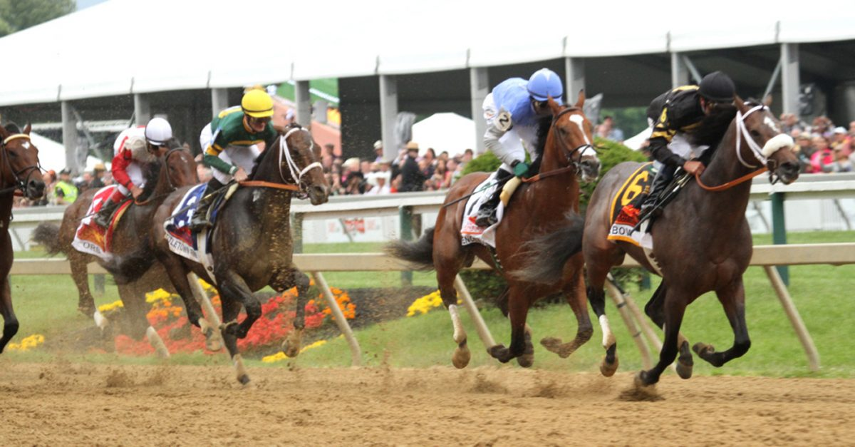 Owner's-eye view: Cooling out after Baltimore's Preakness weekend