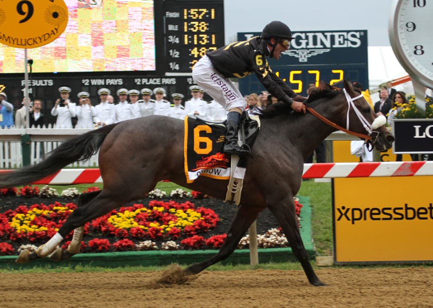 Xpressbet to offer $25k Preakness bet
