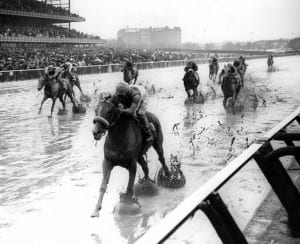 Politely cruises  in the slop at Aqueduct.  Photo from Maryland Thoroughbred Hall of Fame.