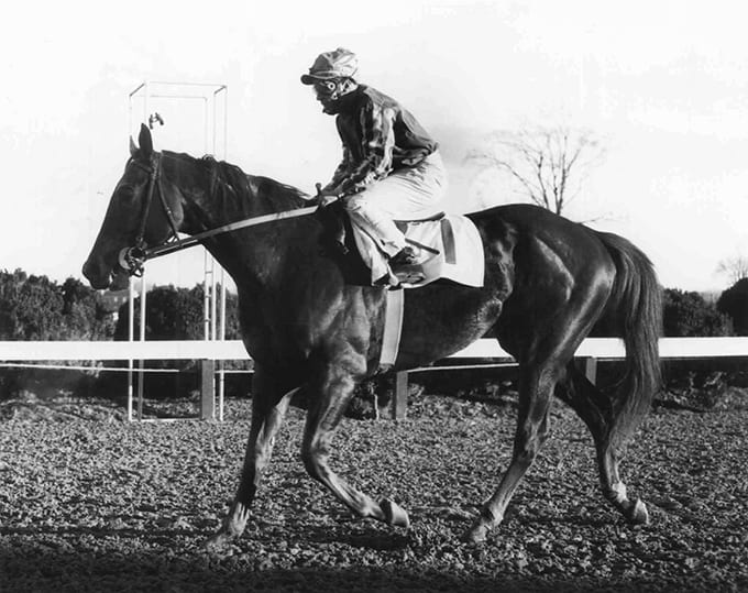 Maryland Thoroughbred Hall of Famers: Vertex
