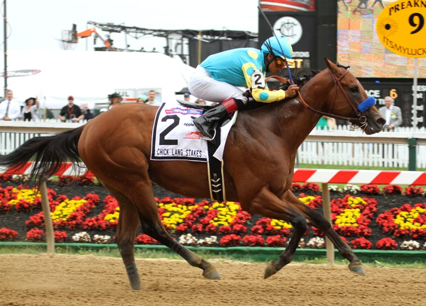 Zee Bros dominated the 2013 Chick Lang Stakes at Pimlico. Photo by Laurie Asseo.