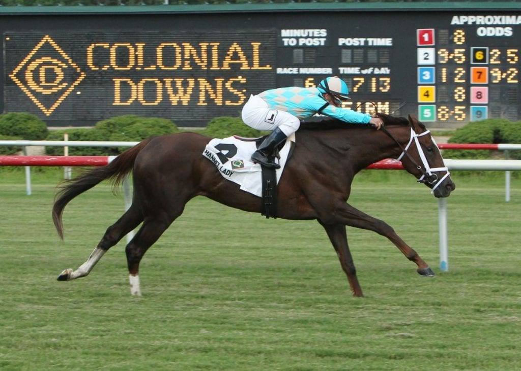 Channel Lady in the 2013 running of the Grade 3  Edward P. Evans All Along at Colonial Downs.