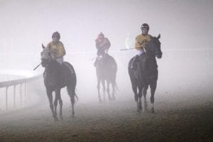 Horses emerge from the fog on opening night 2013 at Colonial Downs. Photo by Nick Hahn.