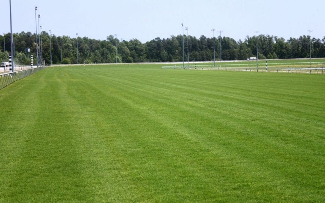 Va. Racing Commission told of progress at Colonial Downs