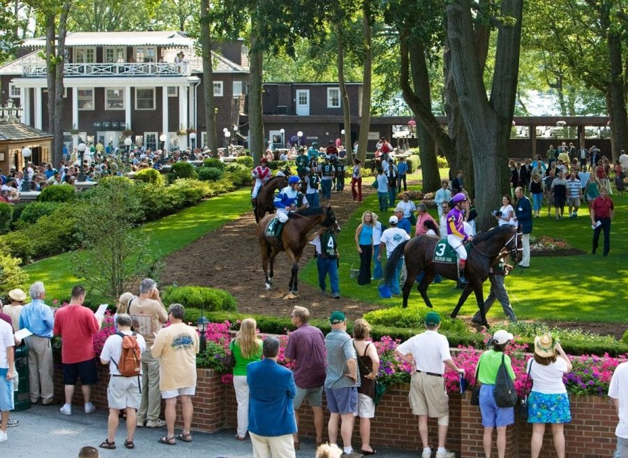 Now and Zen: Handicapping Delaware Park