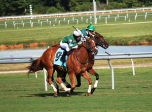 In happier days, Silvertonguedtommy wins the Chenery.  Photo by Nick Hahn.