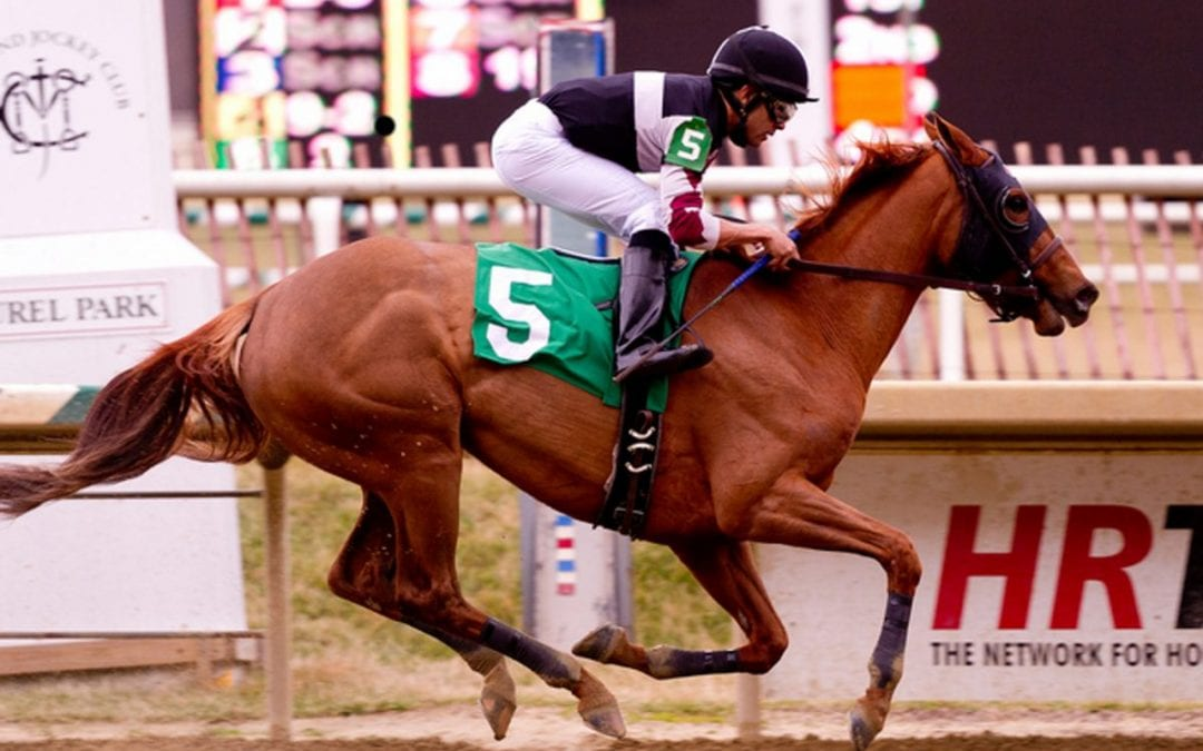 TOBA open house to be held at Sagamore Farm