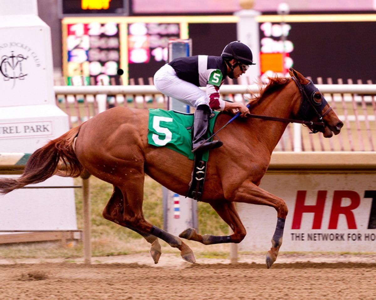 """Sagamore homebred looking to author a """"Great Story"""""""