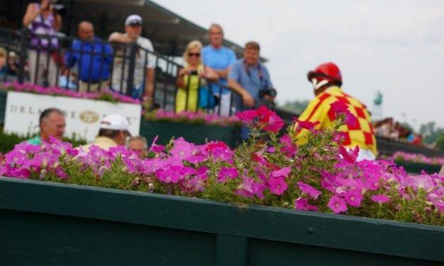 LookBack: Breezing, betting, and big races