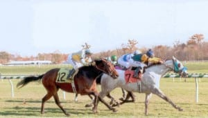 Kim's Dixie Tune, here winning in 2009, is one of many horses that have been helped by TPR.