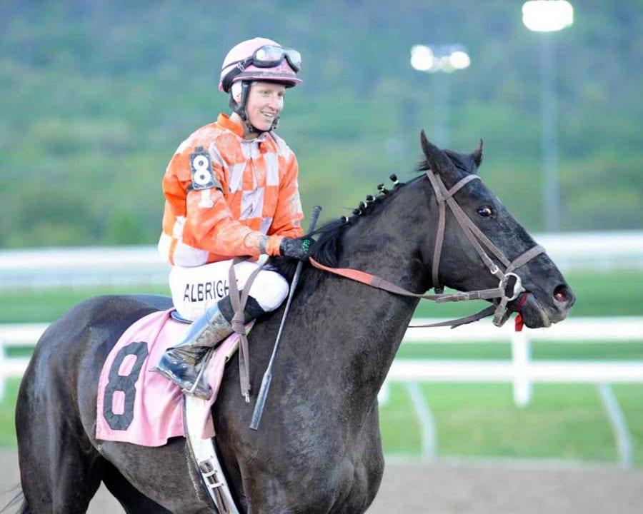 LookBack: Of riders and horses