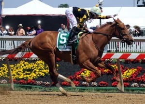 Dance to Bristol wins the Skipat at Pimlico as rider Xavier Perez exults.  Photo by Laurie Asseo.