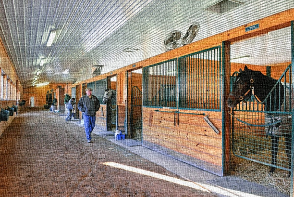 For Paynter, journey back to health began at Fair Hill