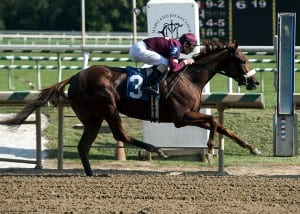 Sheer Drama en route to the Laurel track record at about 1 1/16 miles.  Photo by Jerry Dzierwinski, Maryland Jockey Club.