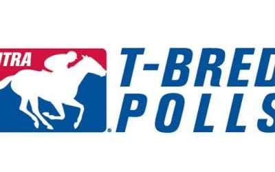 Wells Bayou enters NTRA Top Thoroughbred Poll