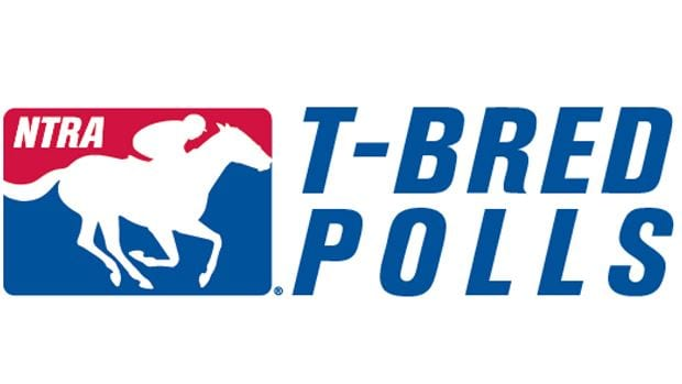 Authentic new leader in NTRA Top Thoroughbred Poll