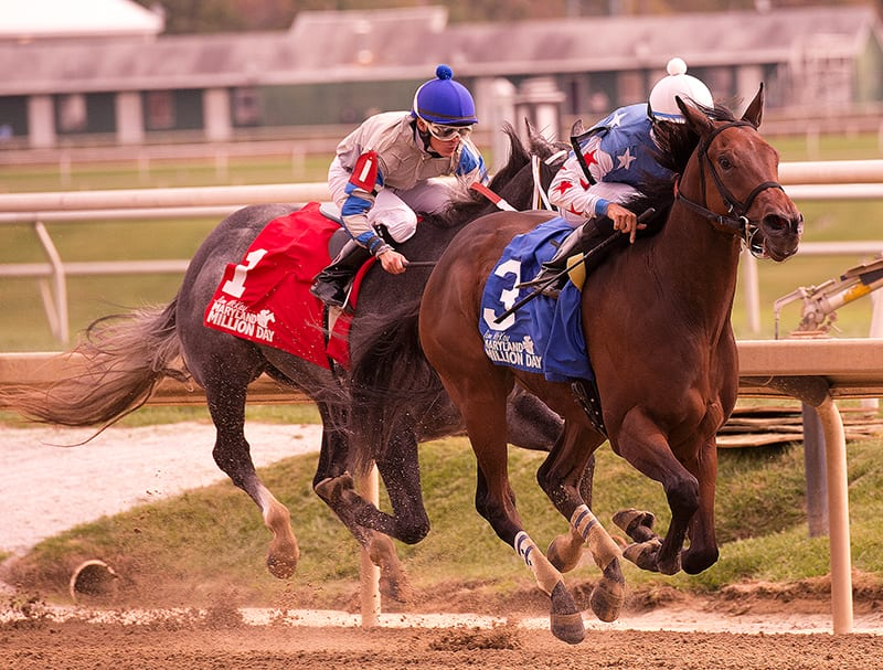 It's a Bang explodes to win Maryland Million Nursery