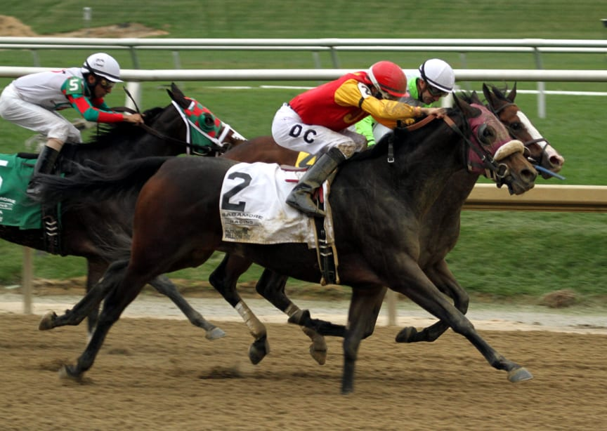 Maddy's Dance stuns the Maryland Million Distaff