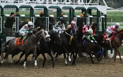 Midlantic equine fatality rate declined in 2020