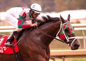 Ribo Bobo wins the 2013 Maryland Million Sprint. Photo by Jim McCue, Maryland Jockey Club.