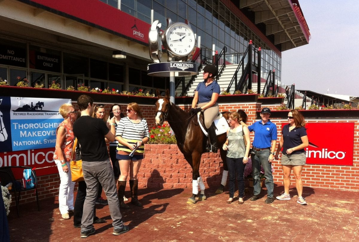 Thoroughbred Makeover points to need for industry initiative on retired racers