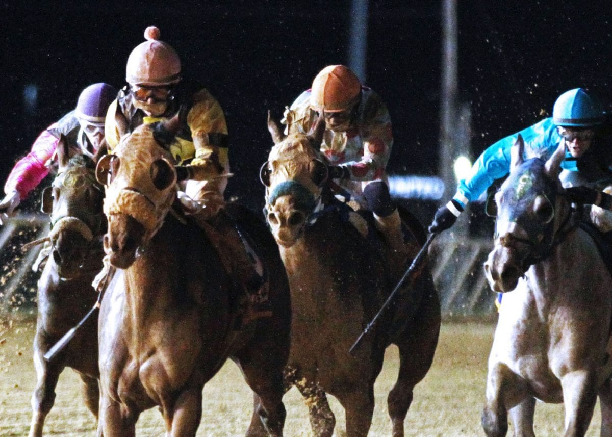 State-breds spotlighted on West Virginia Breeders' Classic night