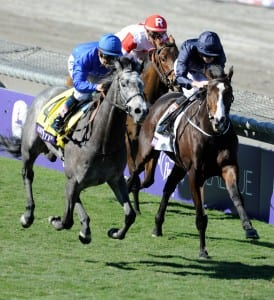 Giovanni Boldini, inside with white blaze, slugs it out with Outstrip in the Breeders' Cup Juvenile Turf. Photo by Gary Mook, Breeders' Cup Ltd.