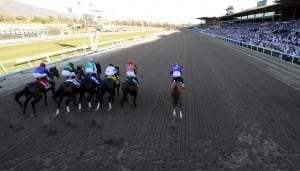 Foreshadowing: Princess of Sylmar breaks outward and behind the field in the first jumps of the Breeders' Cup Distaff.  Photo by Breeders' Cup Ltd.