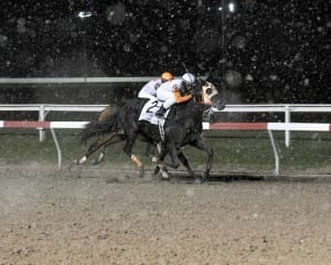Ben's Cat inches clear of Ribo Bobo to win the Fabulous Strike at Penn National.  Photo by B & D Photography.