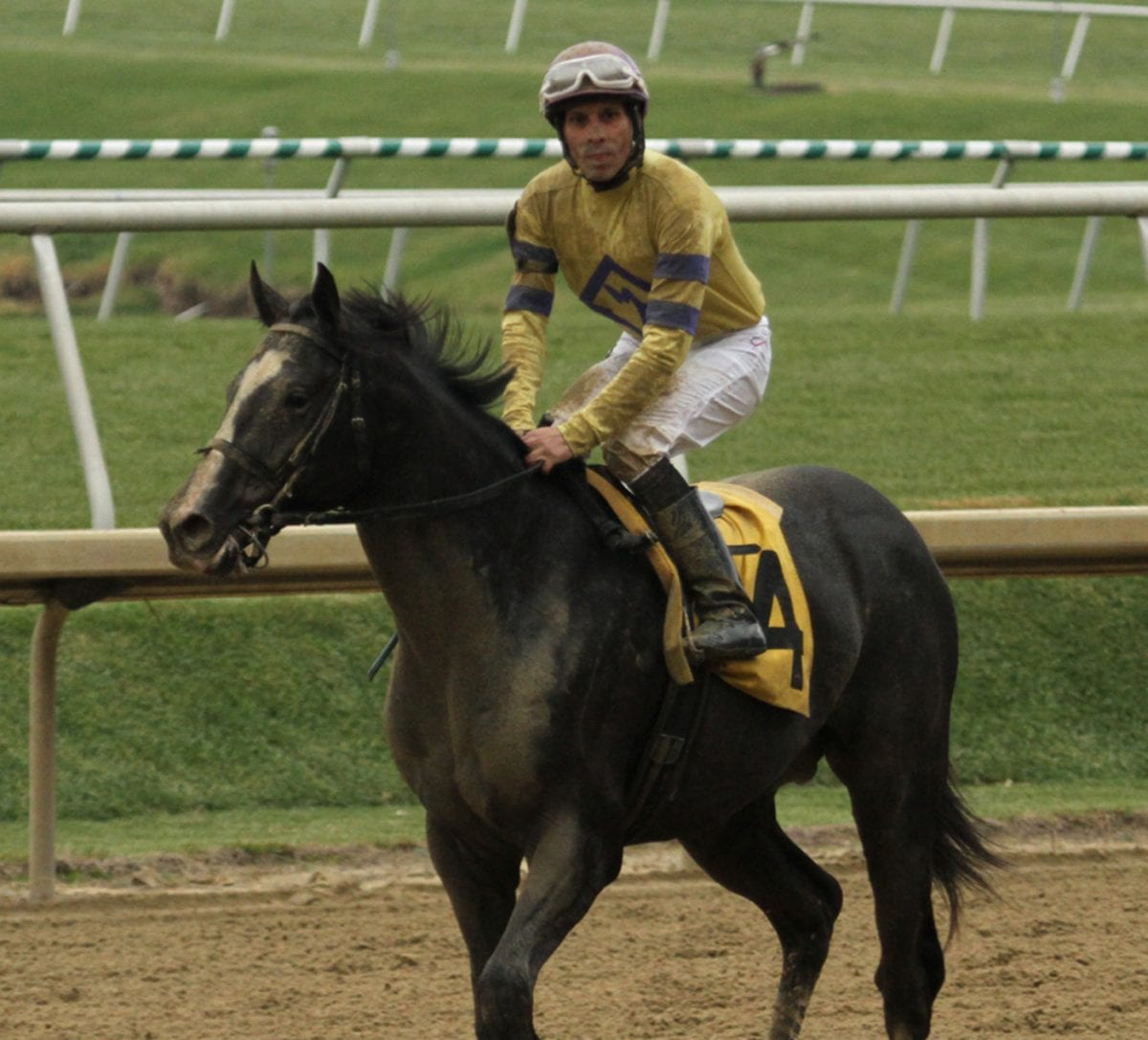 Bobby Zen: Looking for stars among the juvenile set
