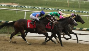 Jessethemarine, inside, rallies past Purse Sensation (between horses) and It's a Bang (#1) to win the James F. Lewis, III Stakes.  Photo by Laurie Asseo.