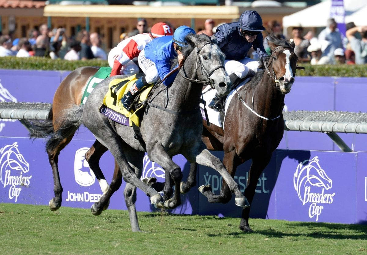 For Midlantic-breds, an odd Breeders' Cup Friday