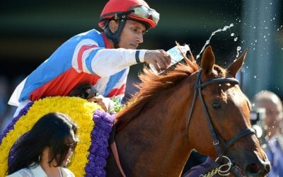"""""""Kind of amazing"""": From Charles Town to the Breeders' Cup"""