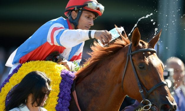 """Kind of amazing"": From Charles Town to the Breeders' Cup"
