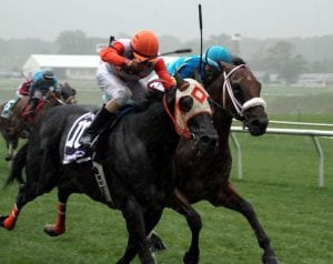 Ben's Cat and Mr. Online in the Laurel Dash.  Photo by Laurie Asseo.