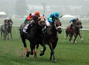 Ben's Cat and Mr. Online in the 2013 Laurel Dash.  Photo by Laurie Asseo.