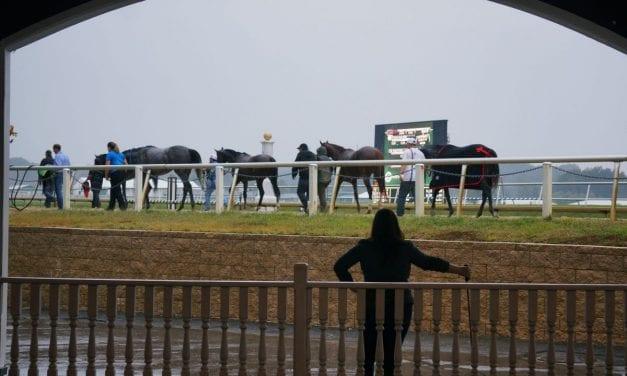 Injury stats, jockey safety on Grayson Racehorse Safety summit agenda