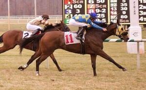 Carrasco strikes again.  Photo by Jim McCue, Maryland Jockey Club.