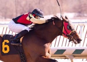 Germaniac.  Photo by Jim McCue, Maryland Jockey Club.