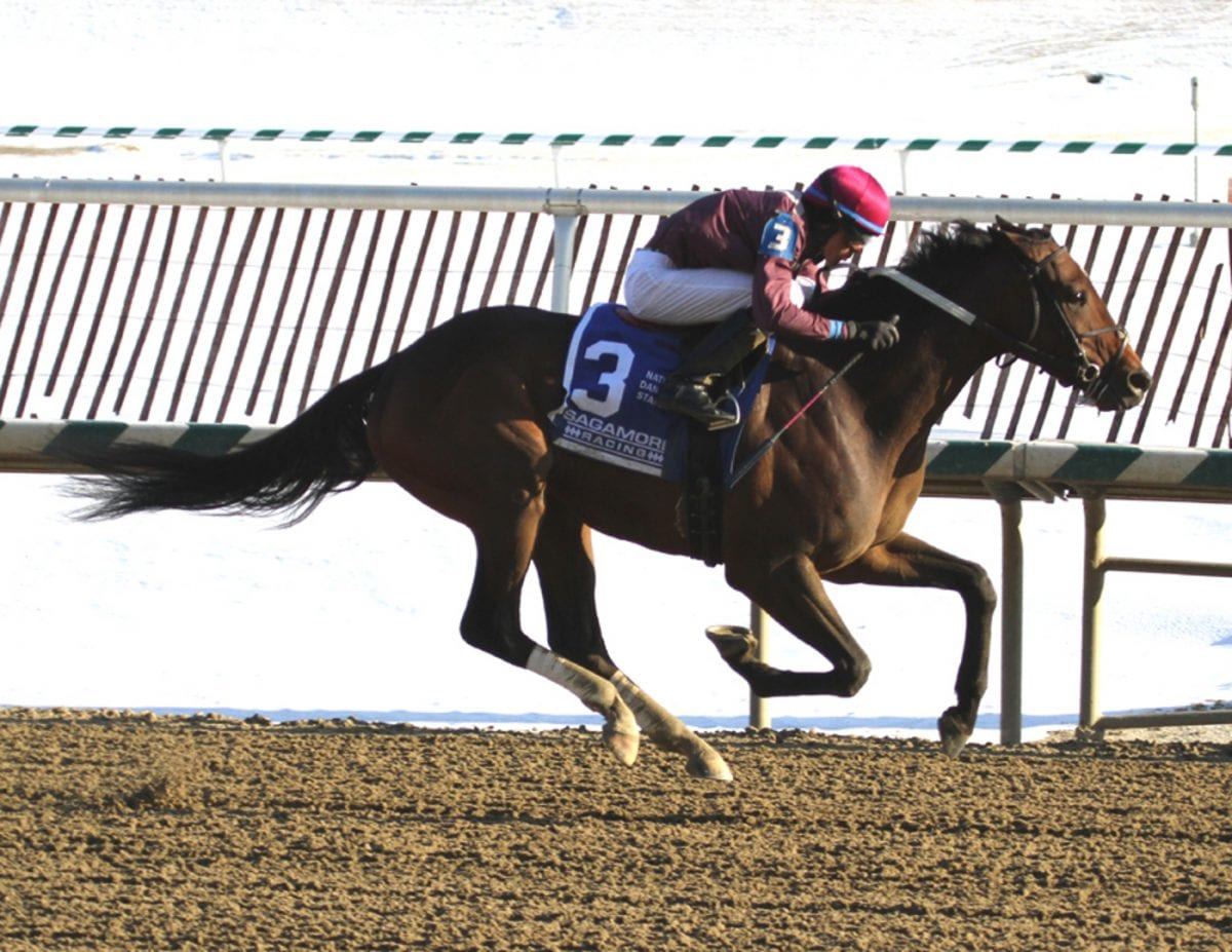 Virginia-breds lead inaugural Top Midlantic-bred Poll