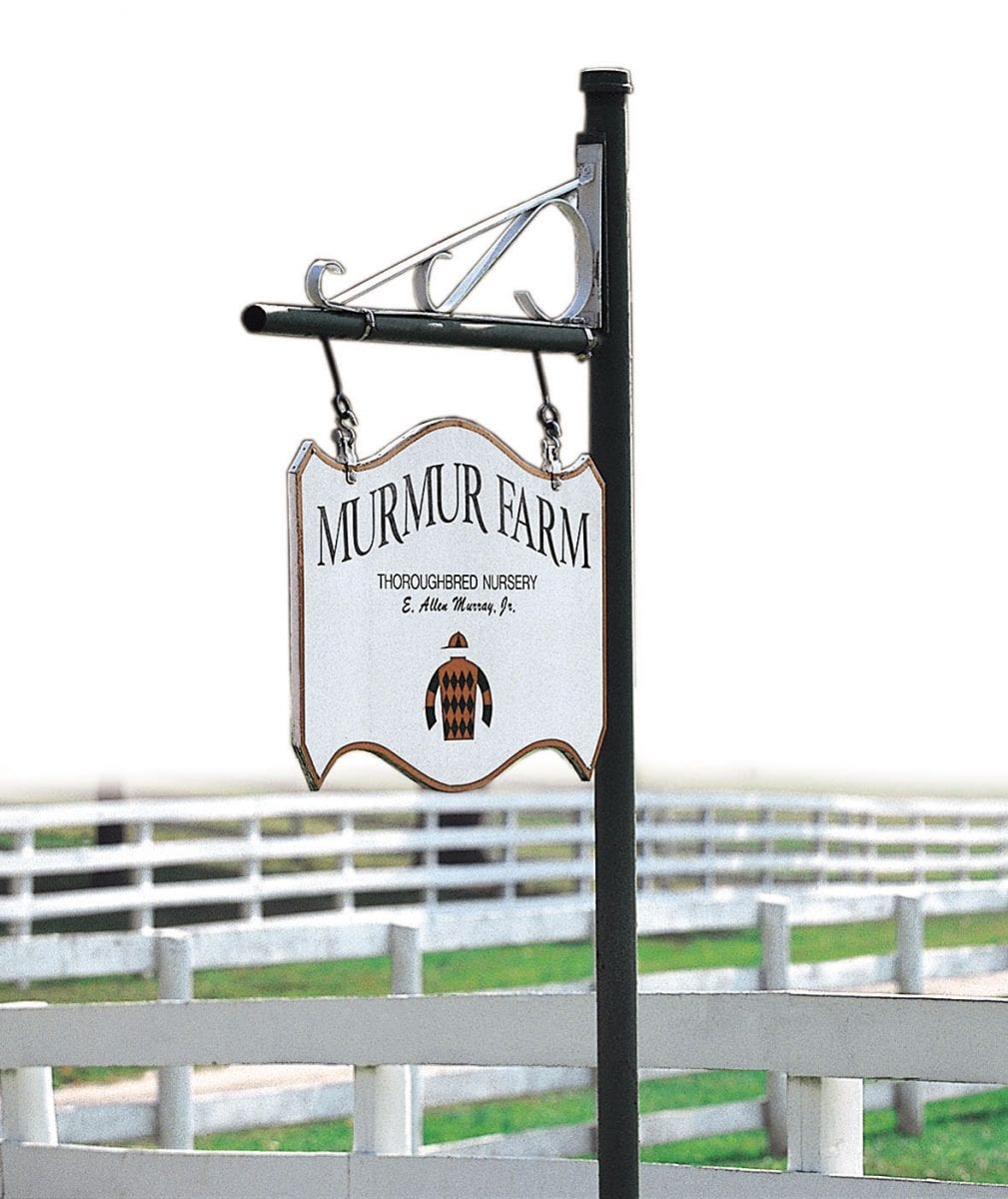 Veteran stallion Petionville moves to Murmur Farm