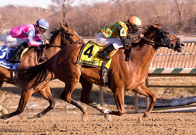 My Wandy's Girl proves best in Fritchie Handicap